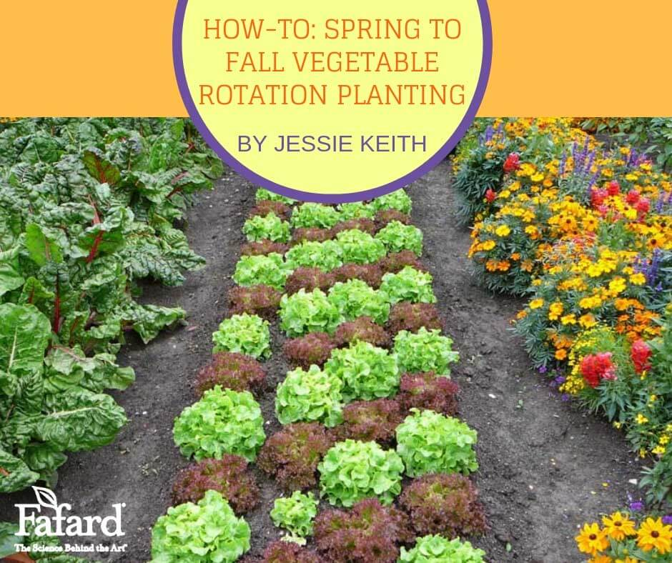 Fafard Spring To Fall Vegetable Rotation Planting For Non Stop