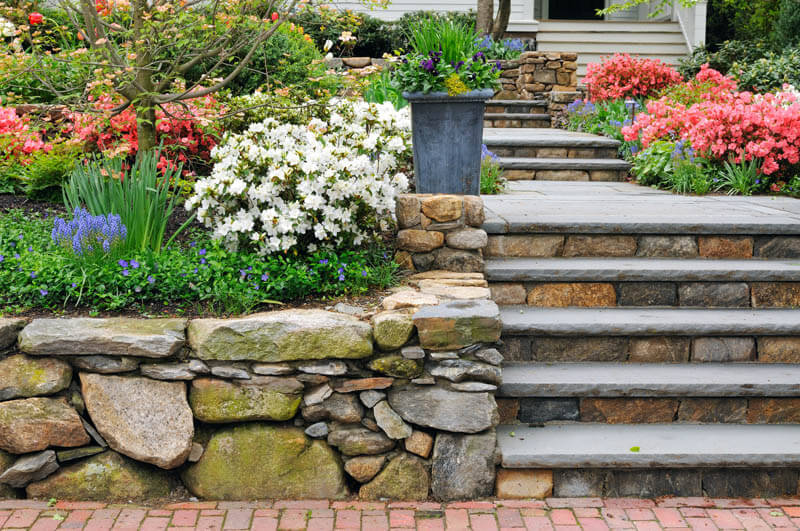 Spring flowers and stone borders