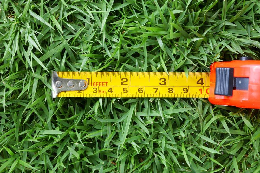 Measuring tape in grass