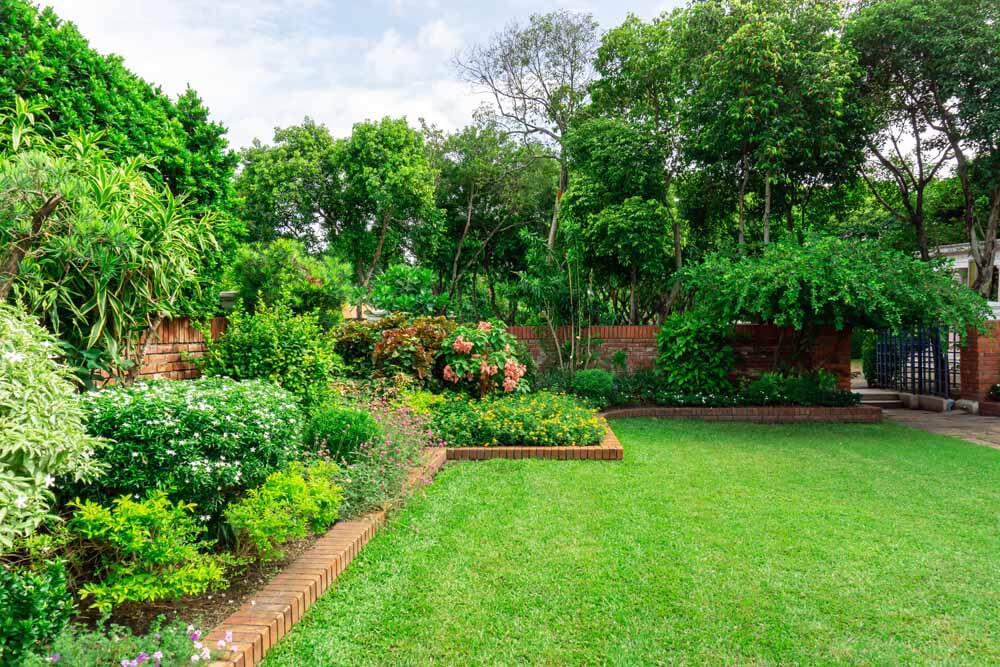 Light, soil, space, garden-style, and other parameters must be considered before planting a new tree or shrub.