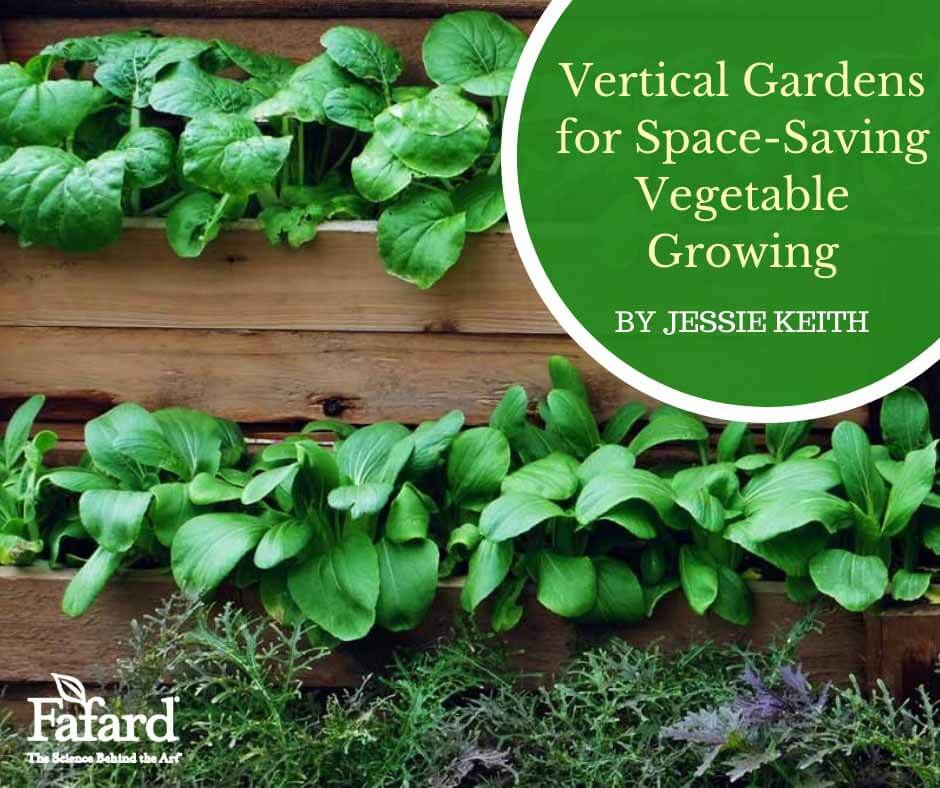 Fafard Container Gardening Archives Fafard