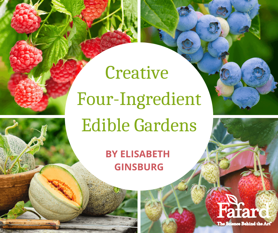 Creative Four-Ingredient Edible Gardens Featured Image