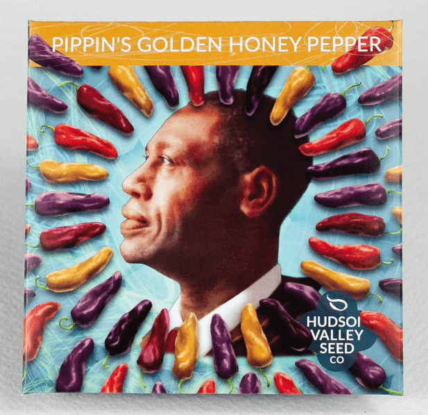 'Pippin's Golden Honey Pepper' (Image thanks to Hudson Valley Seed Co.)