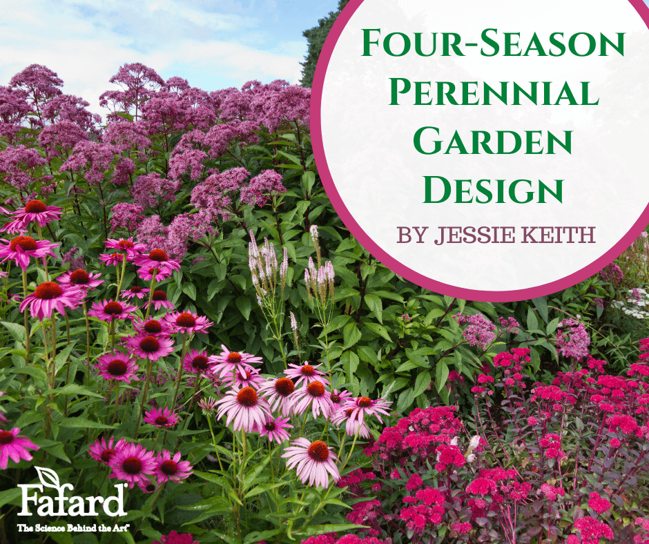 Four-Season Perennial Garden Design Featured Image